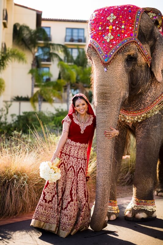 26-Terranea-Stylized-Indian-Wedding