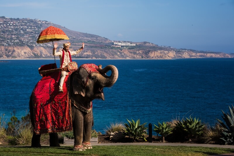 33-Terranea-Stylized-Indian-Wedding
